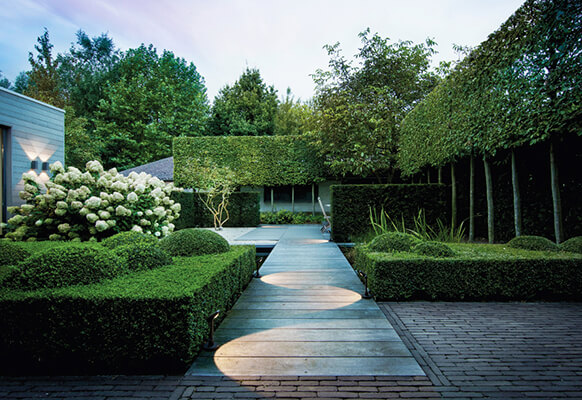 Architectural Plants To Watch Out For This Spring | ModularWalls