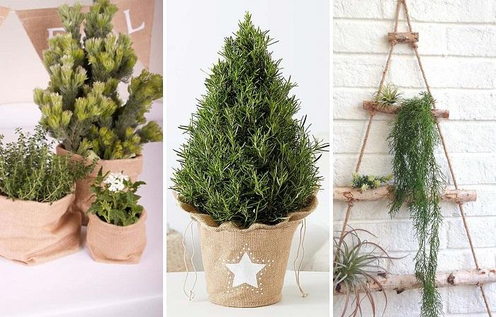 DIY Ideas – 20 Eco Friendly, Alternative Christmas Tree Ideas | ModularWalls