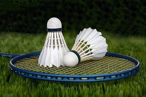 backyard_party_badminton