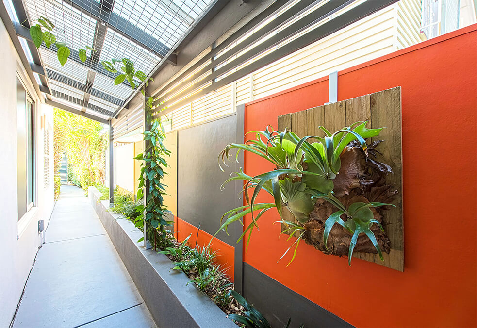 Premium Fencing with plant feature and customised paint finish