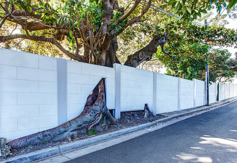 Boundary wall with custom tiled panels and tree root cut away